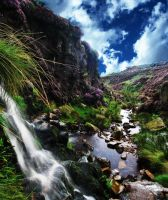 Streaming Valley by Rameez-K
