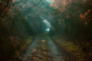The way out by joiedevivre89