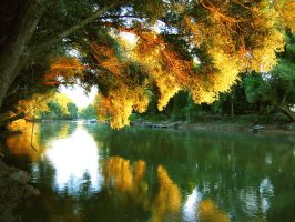 My river by Quilla6
