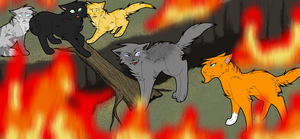 .:They Are Not My Kits:. by meadowllark