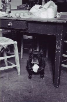 Under The Table. by Giuu