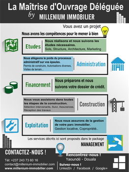 Project Management in real estate Infographic by CamerDesigner