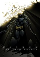 Batman DARK KNIGHT by DeeviousGenius