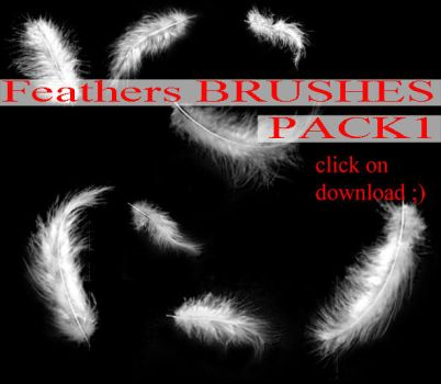 Feathers BRUSHES PACK 1 by whynotastock