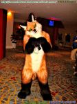 FWA Photo (31/93) Estobhan Furry pose #1 by HomeOfBluAndshadows