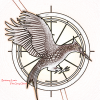 Catching Fire Mockingjay by ArtistGreyGhost