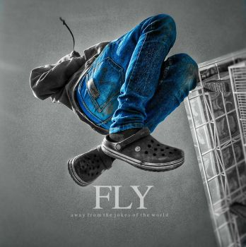 Fly  by dhurzz