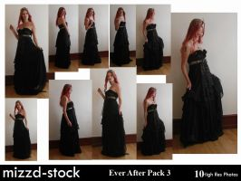 Ever After Pack 3 by mizzd-stock