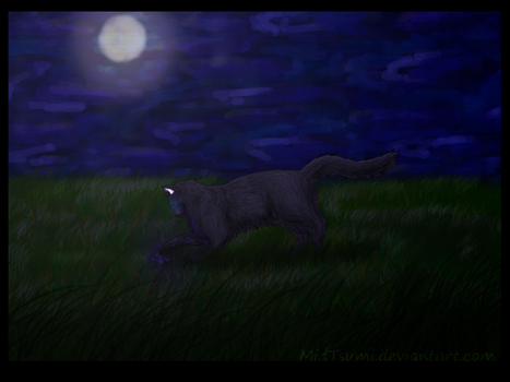 Cinderpelt by MidTsumi