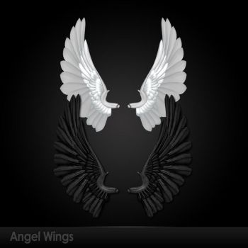 Angel Wings by DarkFantasy69