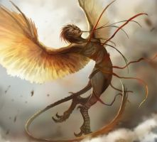 harpy_by_telthona-d5ceuxc.jpg