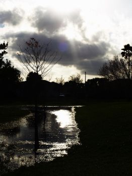 After the Storm by differing-opinions