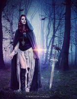 .:Vengeance:. by SummerDreams89