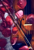 the soul of your violin by Orwald