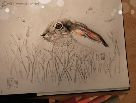 Day 23  - black-tailed Jackrabbit - by Loisa