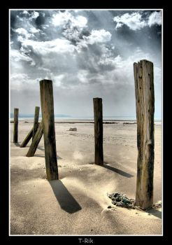 Stick in the Sand2 by Haywood-Photography