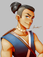 Avatar: The Last Airbender - Sokka by Aeridis