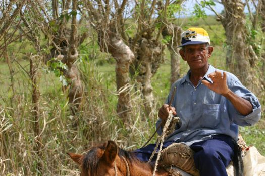 A Dominican Farmer UofM fan by LakeFX