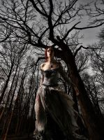Queen of the forest night by jackmaegli
