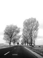 the road. by Club-Romania