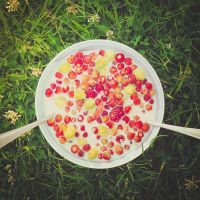 green + red + white = yummy by StopScreamGraphy