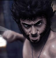 Wolverine by The-Switcher