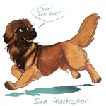 spn dogs: Sam by Aibyou