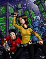 Prime Directive D20: Feds cover by Adam-Turner