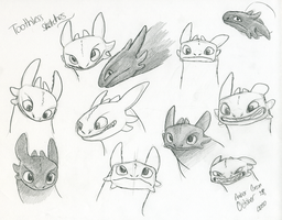 Toothless sketches by CavySpirit