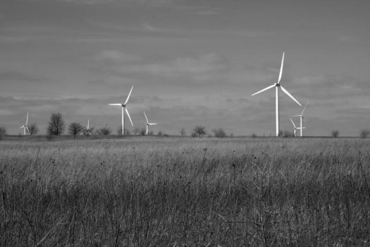 The Cost of Green Energy by handphotography
