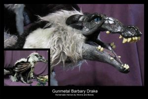 Gunmetal Barbary Drake Mouth Close-Up by WormsandBones