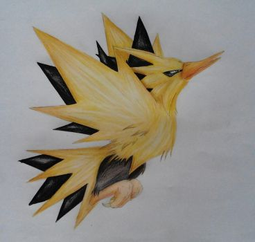 Zapdos drawing by ClairaAkami
