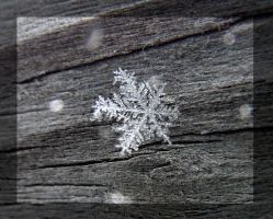 first snowflake by ariseandrejoice
