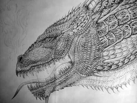 Another Dragon :) by EloiseS16