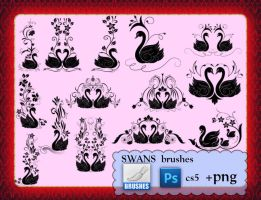 SWANS brushes by roula33