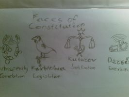Faces of Constitution by whisperity