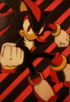 Shadow_Pose_01_2007 by Sky-The-Echidna