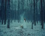 The Hidden by laura-makabresku