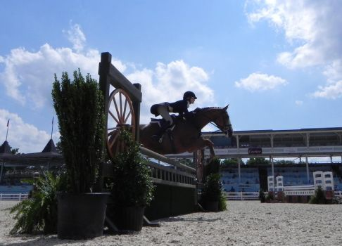 Devon Horse Show May 2011 2 by moxxee