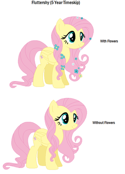 EQA Fluttershy 5 Year Time Skip by TVnGames