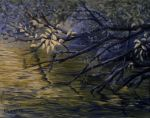Pond Reflections by mbeckett
