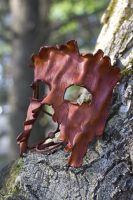 Tree Ent Leather Mask by OsborneArts