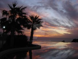 Sunset at palms by alahay