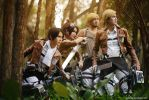 Attack on Titan - To the battlefield by vaxzone