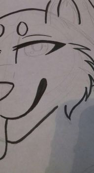 WIP by wolfymaples