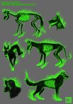 Creature concept sheet: barghest by zero081090