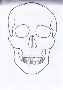 A skull obviously by mli1988