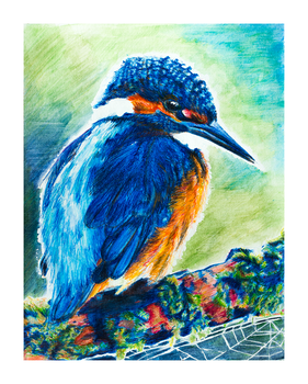 Kingfisher by TheCleverFox