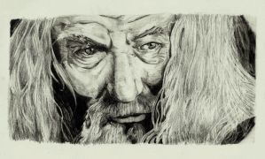 Lord Of The Rings - Gandalf Portrait by Ori-Clayfoot