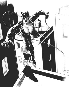 Catwoman by fabiovalentini